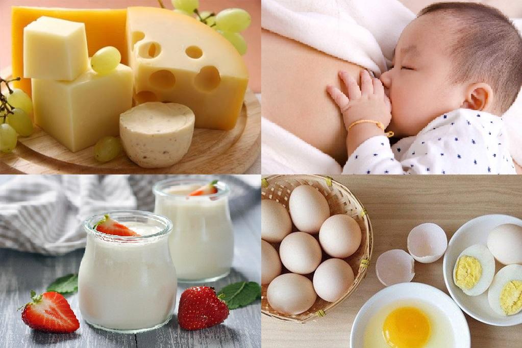 Phô mai, sữa mẹ, sữa chua và trứng giúp trẻ tăng cân hiệu quả, nhanh chóng